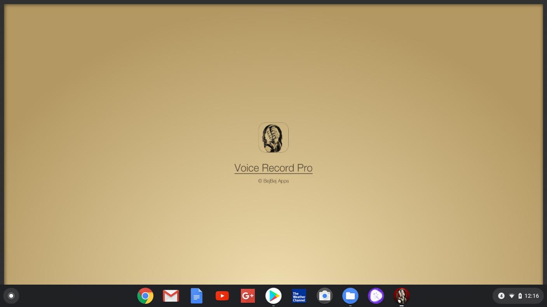 Voice Recorder Pro - Load Screen