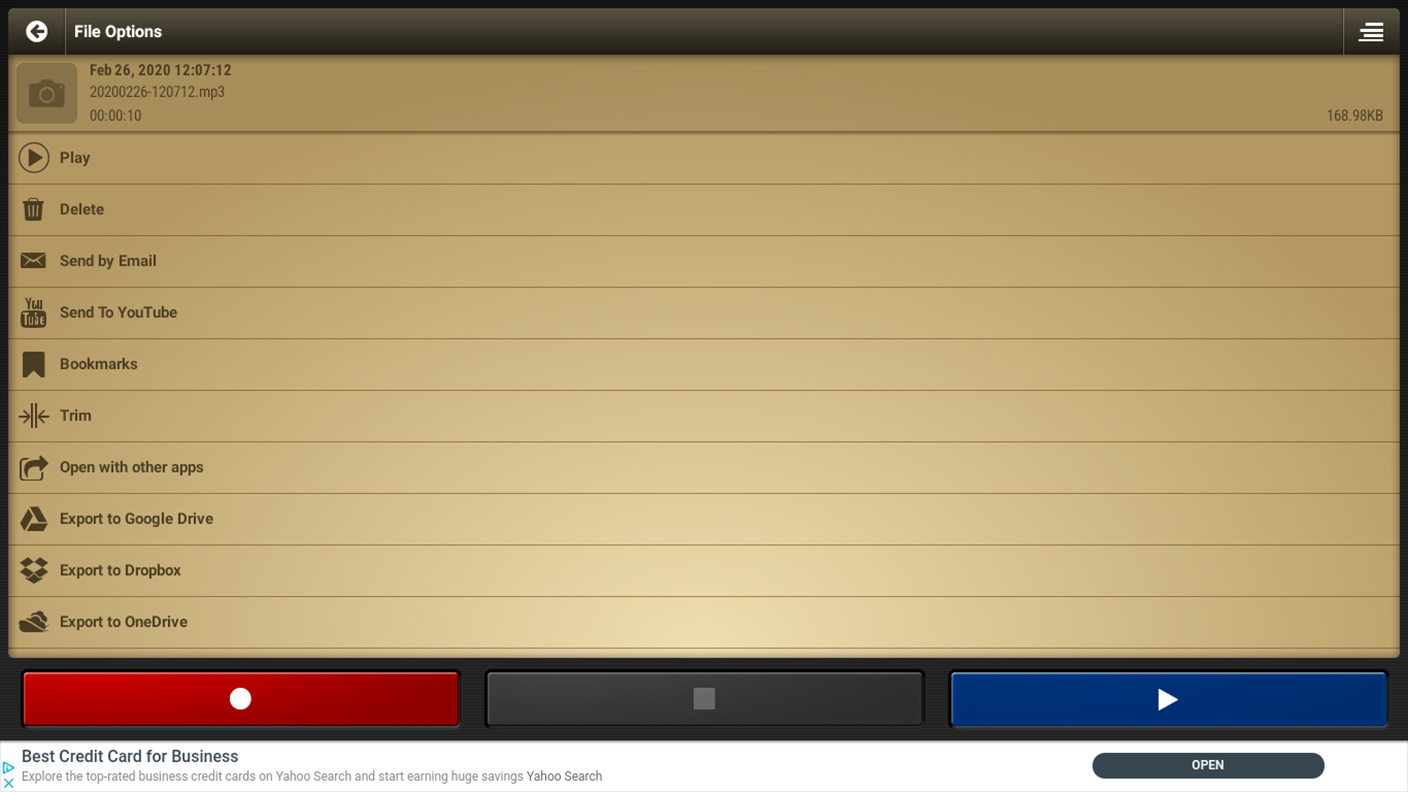 Voice Recorder Pro - Options Screen